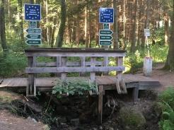 Grenzübergang im Wald bei Rottal